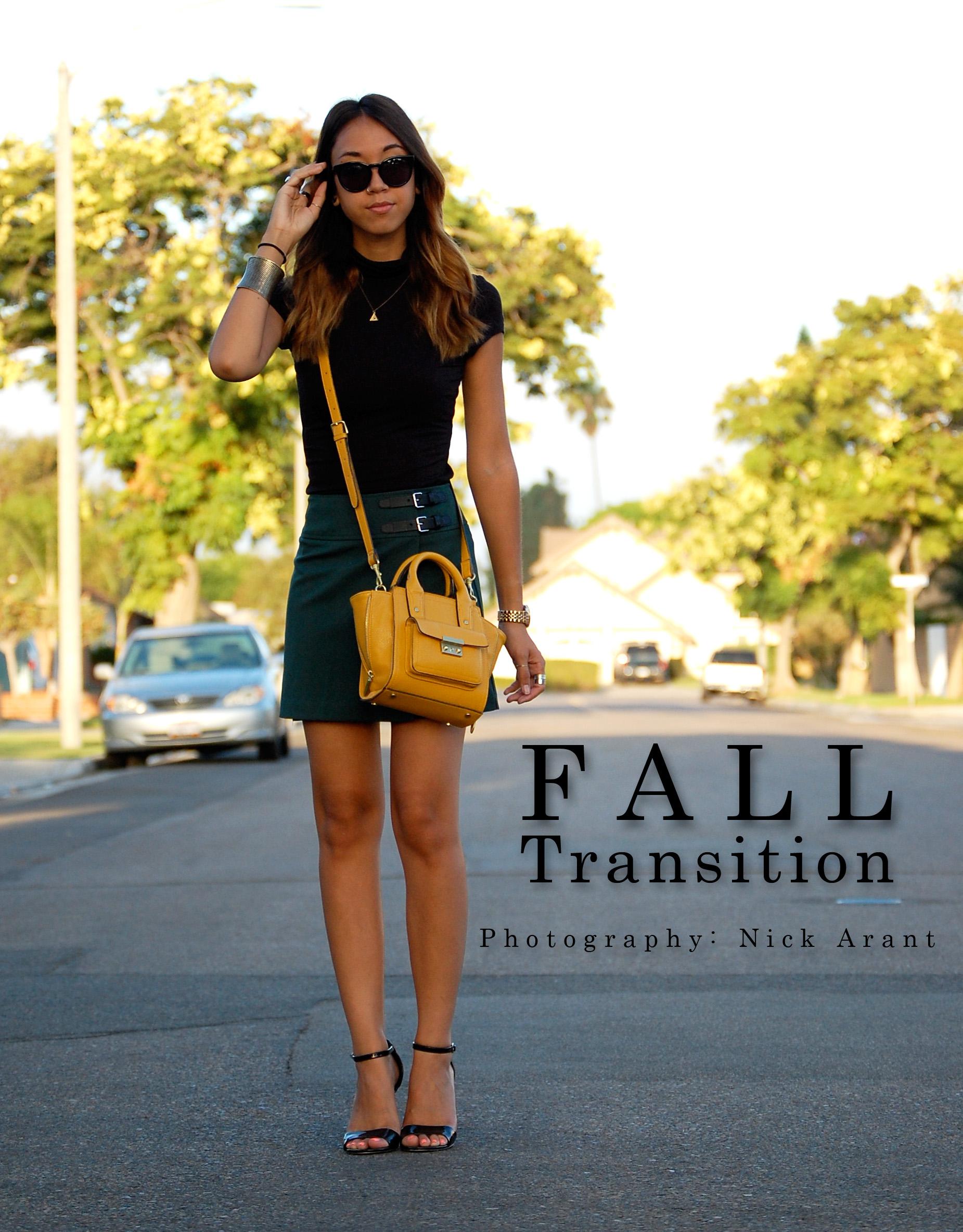 falltransition3